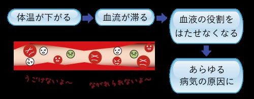 冷え性★埼玉中医薬研究会